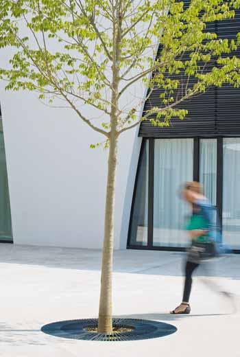 Area - Tree grate - Oxford