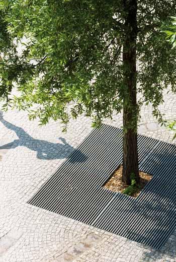 Area - Tree grate - Baltimore
