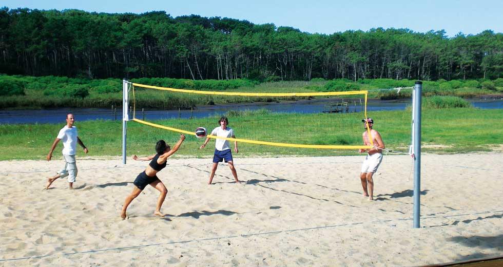 Area - Sports and leisure - Palm beach